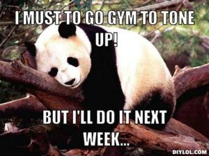 resized_procrastination-panda-meme-generator-i-must-to-go-gym-to-tone-up-but-i-ll-do-it-next-week-dc0a68